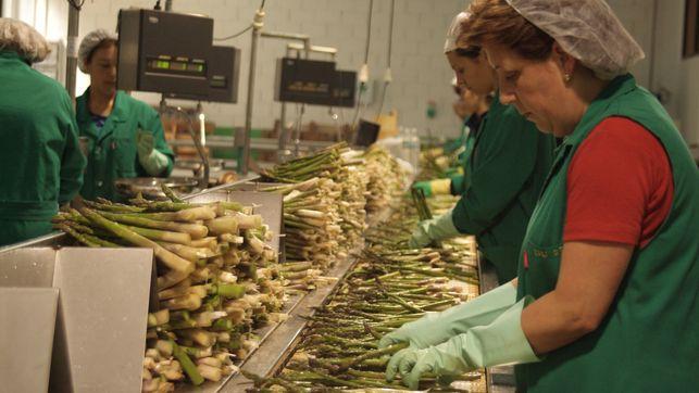 Las mujeres trabajadoras son importantes para el país