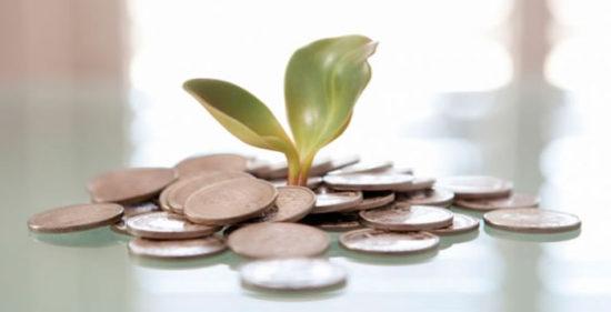 modelo-de-inversion-capital-semilla
