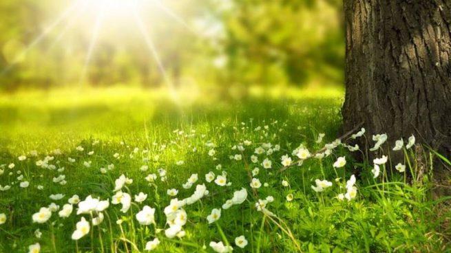 primavera-verano